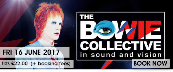 BOWIE BOOK NOW USE